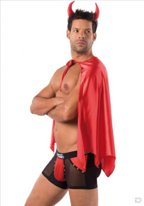 1264428853_1264393300_sexy_costumes_for_men_05