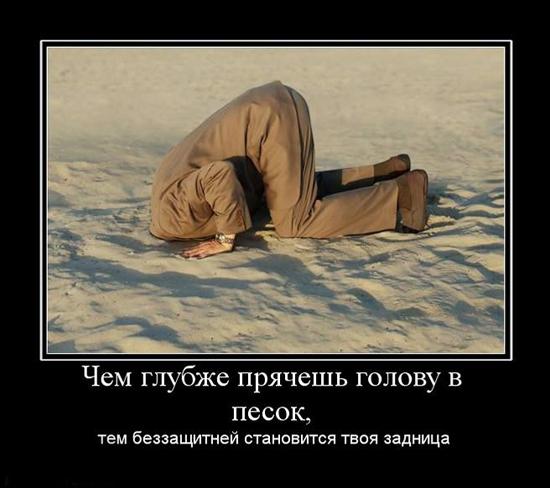 Стоит ли прятать голову в песок