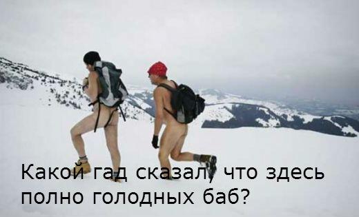 А снежные человеки существуют фото